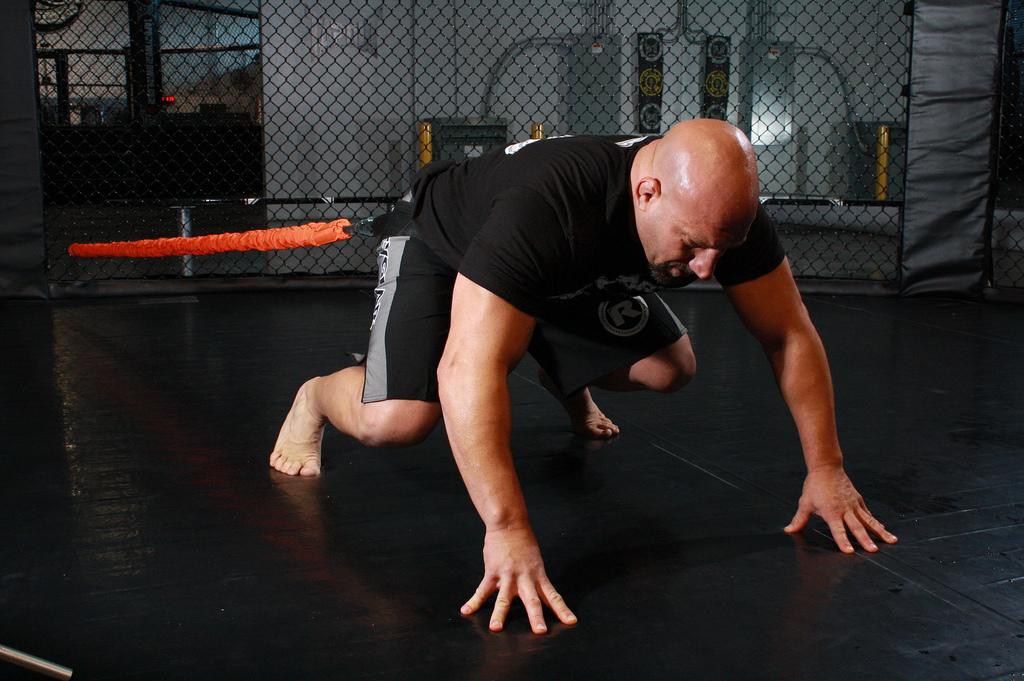 7685656186_59abe5a2a9_b_elastic-training